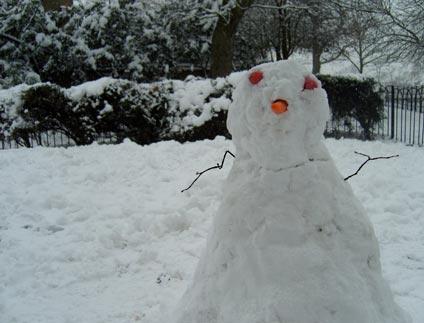 Snow Hope